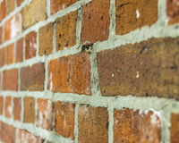 Parede de tijolo vermelho resistida Fotografia de Stock