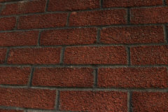 Parede de tijolo vermelho Textured Fotografia de Stock Royalty Free