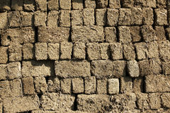 Parede de tijolos da argila Foto de Stock