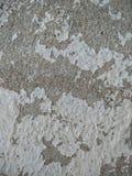 Parede do cimento imagem de stock