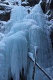 Parede do gelo no jaspe Fotografia de Stock