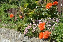 Parede do jardim da casa de campo Imagens de Stock Royalty Free