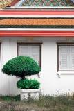 Parede do templo Fotografia de Stock Royalty Free