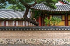 Parede do templo budista Fotos de Stock Royalty Free