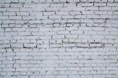 Parede do tijolo branco Imagem de Stock