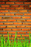 A parede do tijolo e fundo do tijolo com grama sobre abaixo fotos de stock