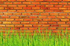 A parede do tijolo e fundo do tijolo com grama sobre abaixo, o tijolo vermelho e a grama sobre abaixo fotos de stock