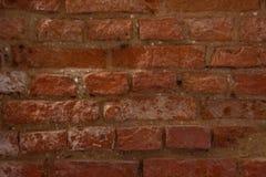 Parede do tijolo vermelho fotografia de stock