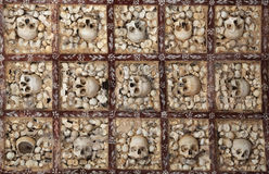 Parede dos ossos humanos Fotos de Stock Royalty Free
