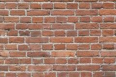 Parede dos tijolos no cimento Foto de Stock Royalty Free