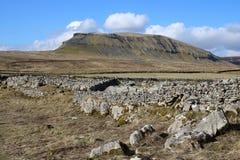 Parede Drystone na vista Pena-y-ghent North Yorkshire fotografia de stock royalty free
