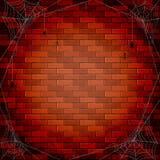 Parede e aranhas de tijolo Imagem de Stock