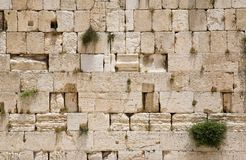 A parede lamentando de Jerusalem - close up Fotos de Stock