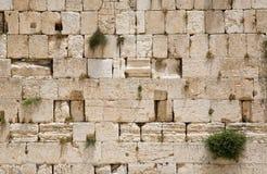 A parede lamentando de Jerusalem - close up fotos de stock