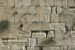 A parede lamentando, Jerusalem, Israel Fotografia de Stock