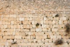 Parede lamentando (parede ocidental) na textura de Jerusalem Fotografia de Stock Royalty Free