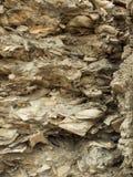 A parede a mais velha de Tapia nos EUA fotografia de stock