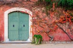 Parede mediterrânea com porta de madeira Fotografia de Stock