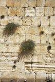 A parede ocidental do Jerusalem Fotos de Stock Royalty Free