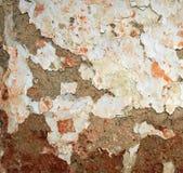Parede pintada da argila Imagem de Stock Royalty Free