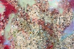 Parede pintada suja Fotos de Stock