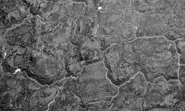 Parede queimada Espuma da isolação carbonizada na parede de partido Fundo abstrato preto Textura carbonizada assustador fotos de stock royalty free