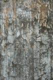 Parede rachada suja do cimento Fotos de Stock