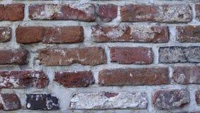Parede velha com alvenaria antiga, fundo do tijolo video estoque