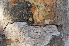 Parede velha com emplastro policromático danificado - fundo Foto de Stock Royalty Free