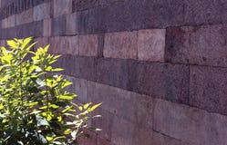 Parede velha do bloco da pedra de Brown com folhas verdes Foto de Stock Royalty Free