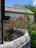 Parede velha do jardim da construção no ajuste tropical Imagem de Stock Royalty Free
