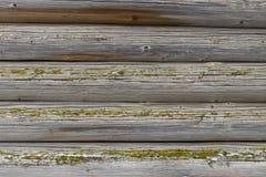 parede velha dos logs Fotografia de Stock Royalty Free