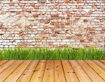 Parede velha e grama verde no assoalho de madeira Fotos de Stock
