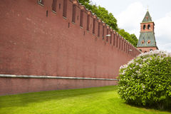 Parede vermelha Kremlin fotografia de stock