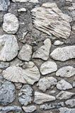 Paredes antigas feitas do coral do mar Foto de Stock