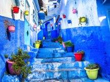 Paredes azuis bonitas com portas brilhantes e os potenciômetros de flor coloridos Imagens de Stock Royalty Free