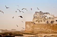 Paredes de Essaouira, Marruecos Imagen de archivo libre de regalías