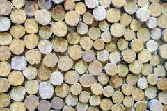 Paredes de madera Fotos de archivo libres de regalías