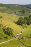 Paredes de pedra secas Fotografia de Stock Royalty Free