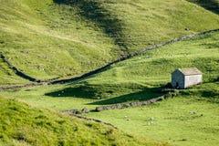 Paredes de pedra secas e celeiros - vales de Yorkshire, Inglaterra, Fotos de Stock Royalty Free