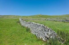Paredes de pedra secas - vales de Yorkshire, Inglaterra Imagem de Stock Royalty Free