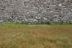Paredes de pedra velhas e flores selvagens de florescência fotografia de stock