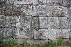 Paredes de pedra velhas e flores selvagens de florescência foto de stock royalty free
