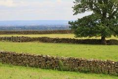 Paredes de piedra maravillosamente hechas a mano, North Yorkshire, Inglaterra Fotos de archivo