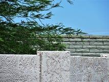 Paredes de piedra y árbol del verde del palo fotografía de archivo libre de regalías