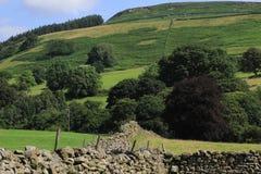 Paredes de piedra y colinas, North Yorkshire Imagenes de archivo