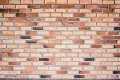 Paredes de tijolo Foto de Stock