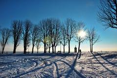 Paredes del invierno de Bérgamo Foto de archivo
