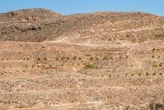 Paredes destruídas no deserto Fotos de Stock Royalty Free