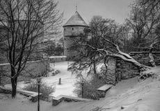 Paredes e torres velhas de Tallinn na neve foto de stock royalty free